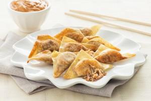 Pulled Pork Dumplings Recipe